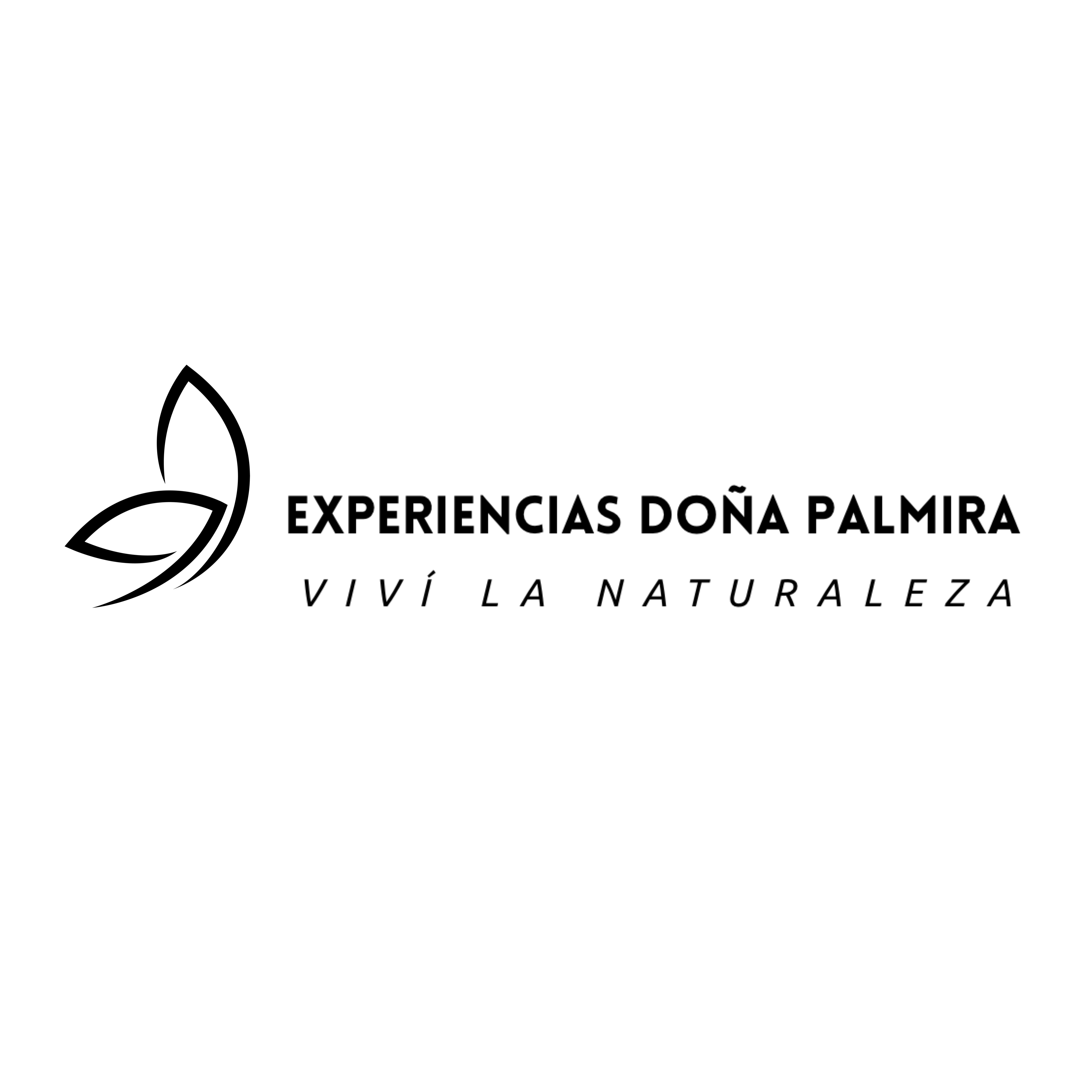 Experiencias Doña Palmira